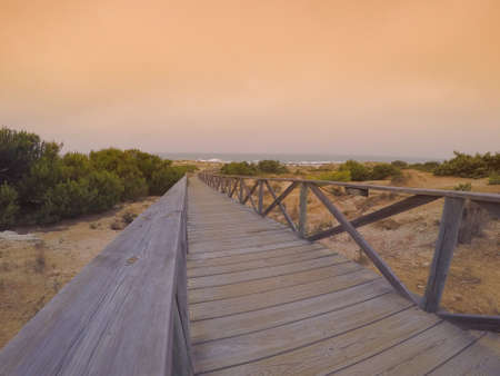 wooden railings: wooden path with railings leading to coast against of seascape at sunset.Copy space