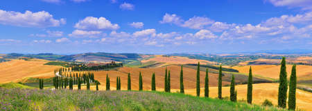 Tuscany, Italy - July 5, 2018: Cypress trees and meadow with typical tuscan house, Val d'Orcia, Italy - Tuscany 에디토리얼