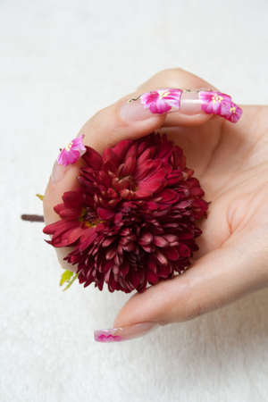 Manicured fingers holding red flower, over a white towel