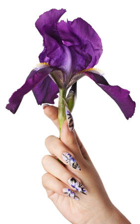 The female hand with beautiful nails, holds a flower, on a white background