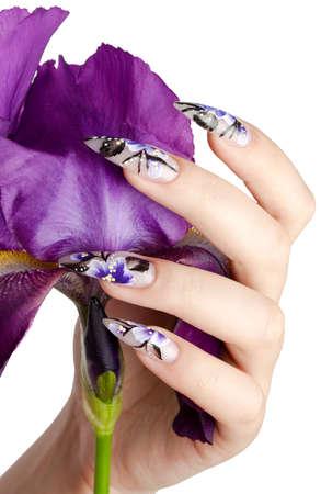 unas largas: Mano femenina con u�as hermosas sobre una flor violeta, sobre un fondo blanco Foto de archivo