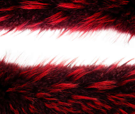 Frame from two fur texture isolated on a white background
