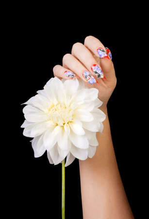 Female hand with beautiful fingernails and a white flower, on a black background Stock Photo