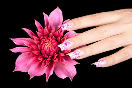 Female hand with beautiful fingernails over a pink flower, on a black background photo