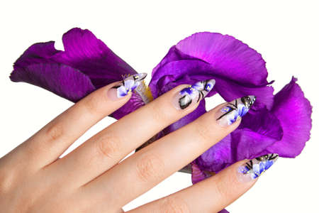The female hand, with beautiful nails, over a violet flower, on a white background