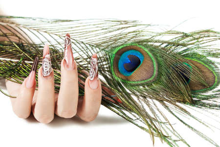 Hand of the girl with beautiful nails hold a peacock feather, on a white background Stock Photo