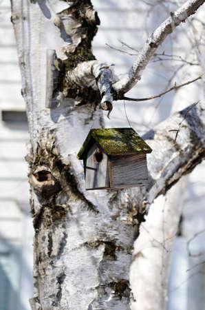 maison oiseau: Bird house Banque d'images