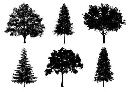 Beautiful collection tree silhouettes and cutting on a white background Reklamní fotografie