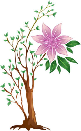 florescence: one large full-blown pink flower with green leaves on a small branching tree,  on a white background