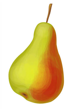 Realistic fruit, yellow pear with one side red with a stalk