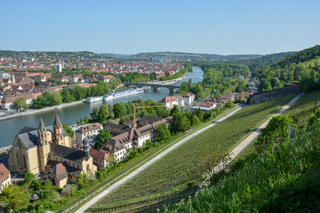 Vineyards near the Marienberg castle in Wuerzburg at the river Main on a sunny day and blue sky Editorial