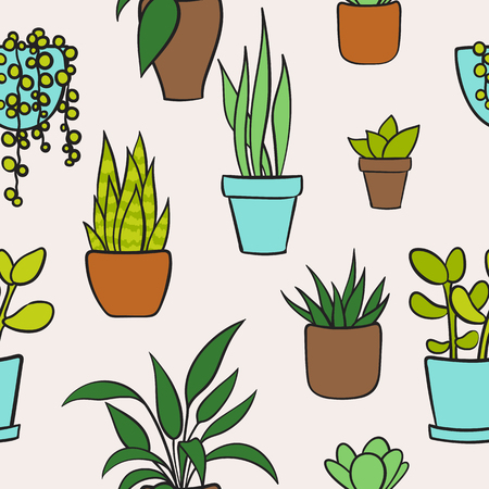 Vector seamless pattern with house plants in pots. Cute cartoon pattern. Vector illustration