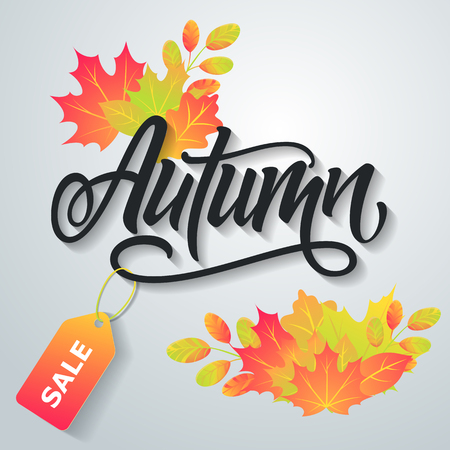 Autumn sale flyer on a background of leaves. Handmade vector lettering illustration.