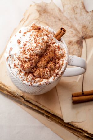 Cup of cocoa with cinnamon, whipped cream and chocolate. Textile background. Scandinavian winter concept. Vertical composition. Top view. Stock Photo