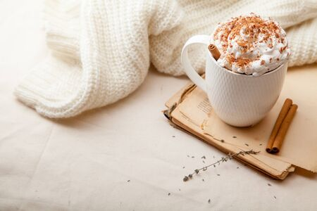 Cup of cocoa with cinnamon, whipped cream and chocolate. Textile background. Scandinavian winter concept. Horizontal composition with copy space. Stock Photo