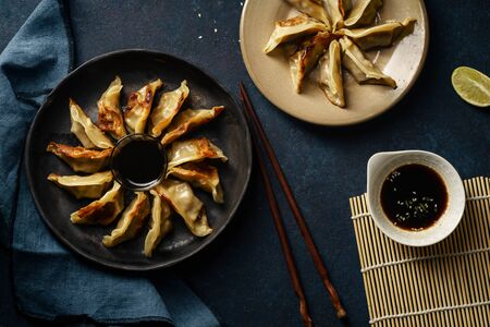 Fried gyoza dumplings with duck served with soy sauce ans sesame seeds. Dark blue concrete background