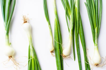 Creative layout with fresh green chives isolated on white background