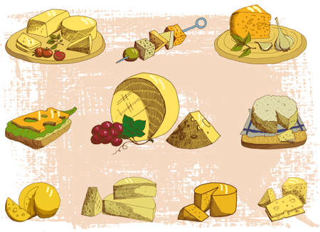 edam: Cheese platter on a neutral background Illustration