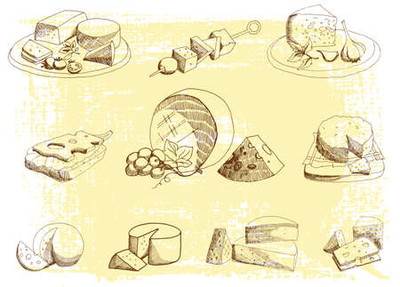 appetizers: Cheese platter on a neutral background Illustration