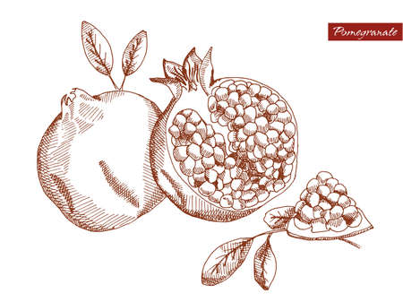 neutral background: Pomegranate on a neutral background