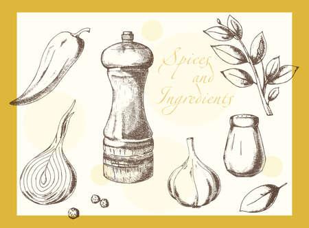 Satz von natürlichen Gewürzen von Hand gefertigt Zeichnung