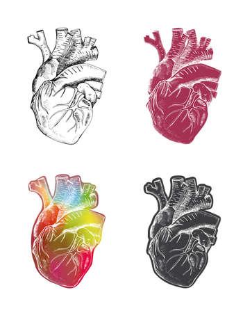 Art design of human heart