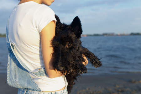 scottish female: brunette travels on the beach true friend