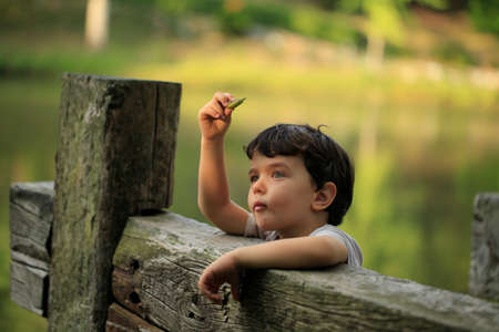 Little child curiously looking at a leaf photo