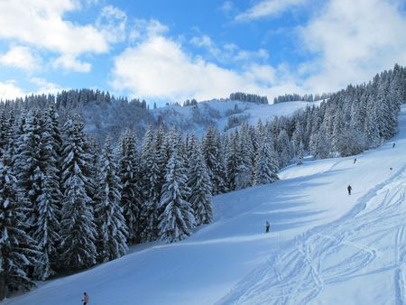 piste: Snow covered ski piste surrounded by trees on sunny day, Combloux French alps France