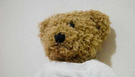 ocular diseases: Teddy bear for different concepts