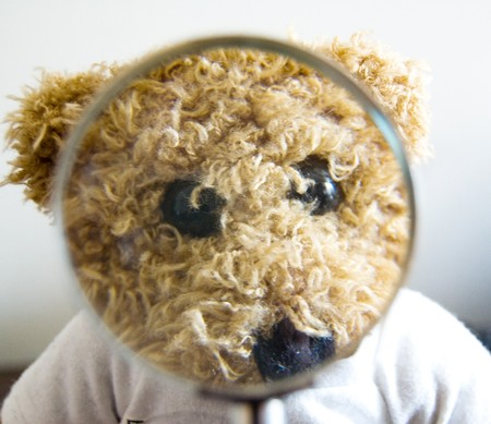 ocular diseases: Teddy bear for different concepts: education, vision, optics, lie, truth Stock Photo