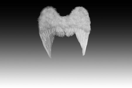 Angel's wings Stock Photo - 6037643