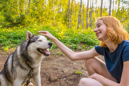 Beautiful young lady with her adorable cute dog of siberian hasky breed in summer forest at sunset.  Happy teenage girl and pet. Authentic lifestyle moments. Selective focus Standard-Bild - 112630998