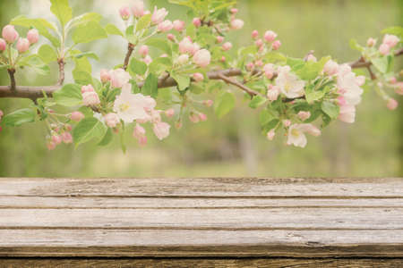 Empty wooden table with blurred spring background of blossoming wild apple tree. Mock up for display or montage products