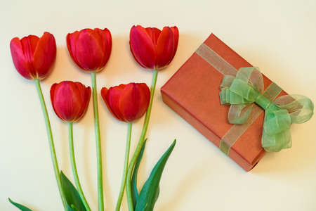 Red tulips and gift box with green bow on ight pastel background. Beautiful spring floral layout. Greeting card for womens or mothers day. Flat lay, top view Stock Photo