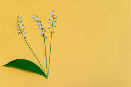 Lilies of the valley flowers on bright yellow paper background. Beautiful spring composition in minimal style. Top view, flat lay, copy space Stock Photo