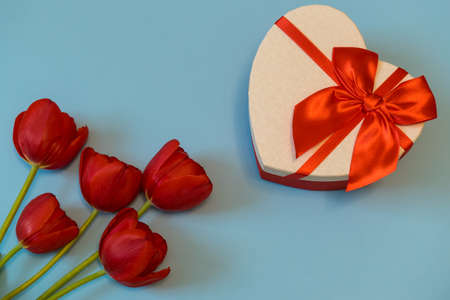 Red tulips and gift box in heart shape with red bow on blue pastel background. Beautiful spring floral layout. Greeting card for Valentines, womens or mothers day. Flat lay, top view, copy space