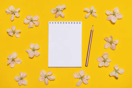 Notebook and pencil with blossoming apple flowers on bright yellow background. Beautiful spring mock up, womens or mothers day concept. Flat lay, top view, copy space for text. Banco de Imagens