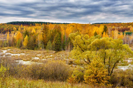 Picturesque autumn landscape. View from the hill to the lowland with forest and swamps. Beautiful natural background. Stock fotó