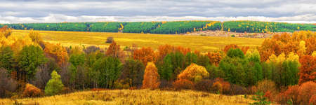 Picturesque autumn landscape in green and yellow colors. Panoramic view from hill to lowland with grove and field in cloudy day. Colorful autumnal nature, beautiful natural background.