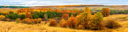 Picturesque autumn landscape in green and yellow colors. Panoramic view from hill to lowland with grove, village and field in cloudy day. Colorful autumnal nature, beautiful natural background Stock fotó