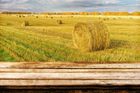 Empty wooden table with blurred autumn landscape of beveled field and straw bales. Can be used for display or montage products