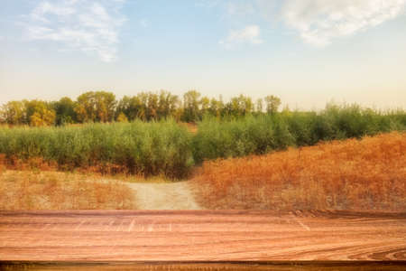 Empty wooden table with summer background of riverside at sunset. Can be used for display or montage products Stock fotó