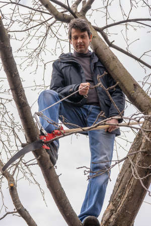Man climbing high on an apple tree with pruner against sky. Pruning of fruit trees with lopper. Spring or autumn work in garden. Gardening concept.
