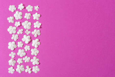 Beautiful floral border made of fresh white snowball flowers on bright pink background. Spring or summer natural backdrop, flat lay, top view, copy space.