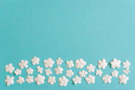Beautiful floral border made of fresh white snowball flowers on blue pastel background. Spring or summer natural backdrop, flat lay, top view, copy space.