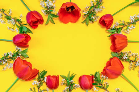Oval frame made of colorful red tulips and cherry blossom twigs on bright yellow paper background. Beautiful spring layout. Floral mock up for greeting card. Flat lay, top view, copy space, close up Stock fotó