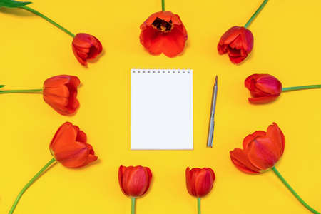 Oval frame made of colorful red tulips on bright yellow paper background with white notebook and pen. Beautiful spring layout. Floral mock up for greeting card. Flat lay, top view, copy space
