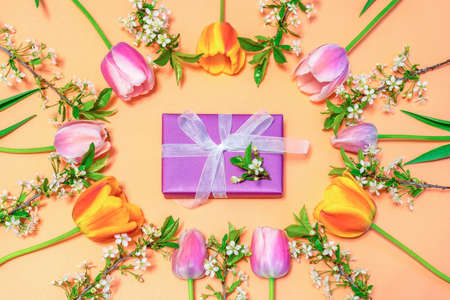 Oval frame made of colorful pink and orange tulips with cherry blossom twigs on peachy background and gift box wrapping in violet paper with white ribbon. Beautiful spring floral greeting card.