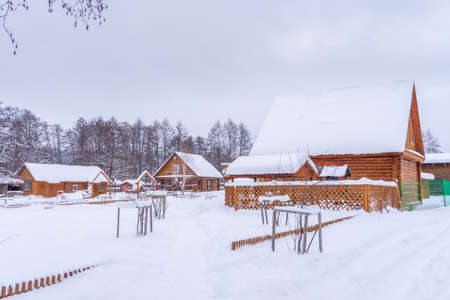 Countryside in winter. Wooden houses and outbuildings covered with snow in cloudy winter day. Rural landscape, village after snowfall. Standard-Bild